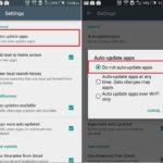 Stop installed app auto update