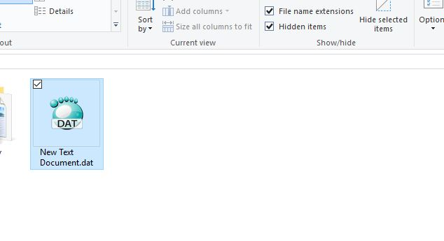 Converted in to dat file: Open .Dat file on windows