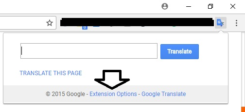 Google Translate Extension option