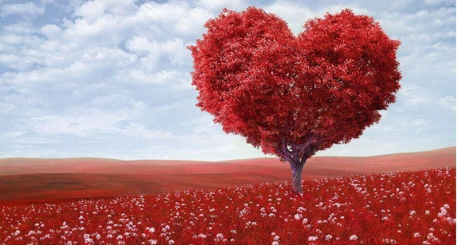 14. love couple image 2019 instgram dpz (1)