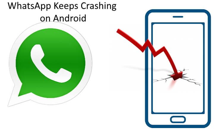 WhatsApp Keeps Crashing on android mobile