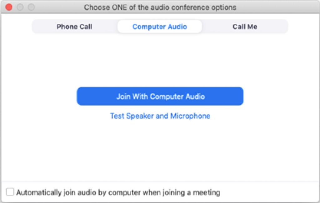 audio conference option (1)